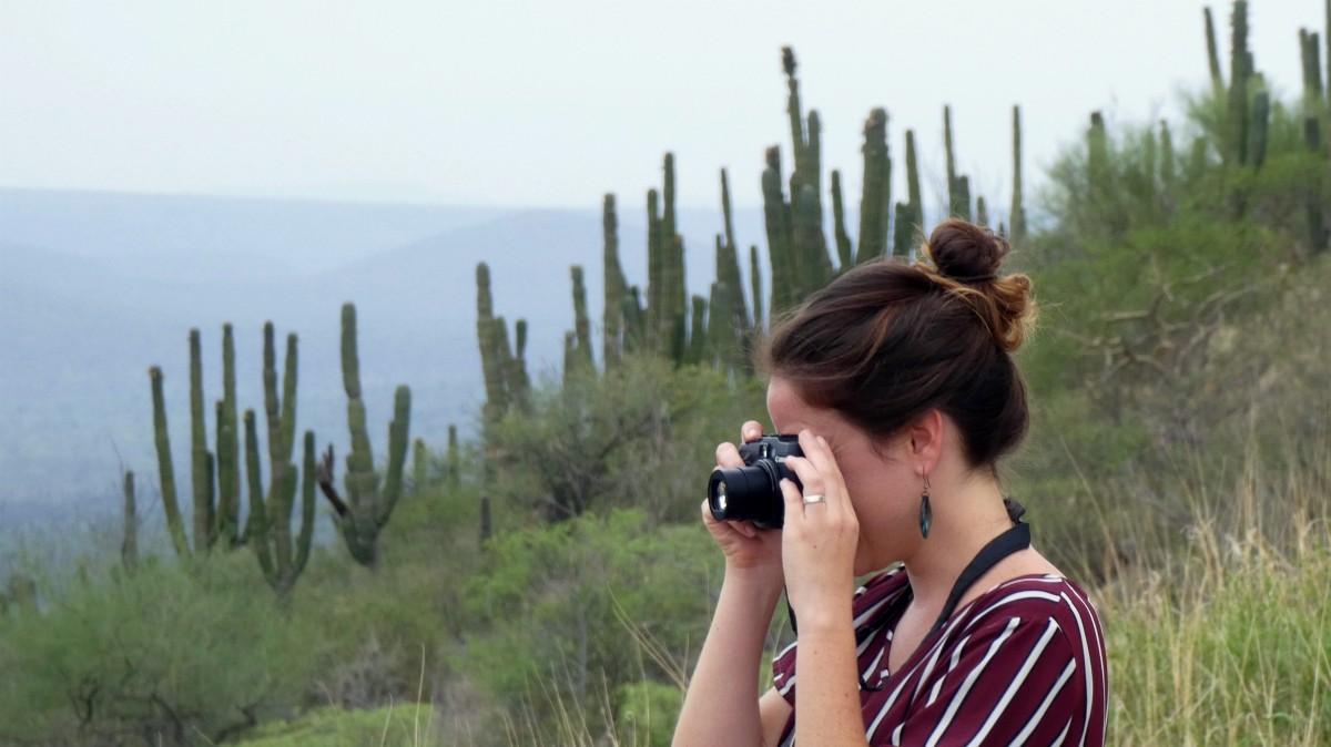 fotografa loreto cactus paisaje baja california sur