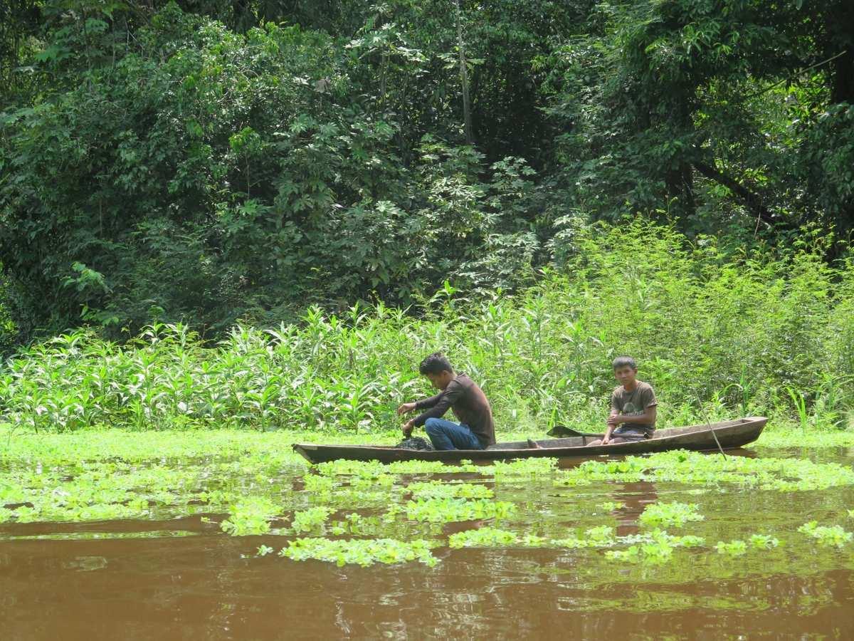 rio yarapa peque peque selva amazonica peru