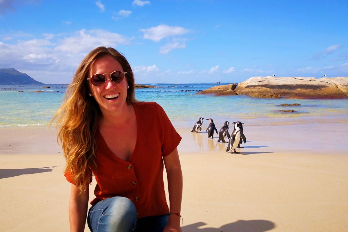playa de pinguinos en ciudad del cabo