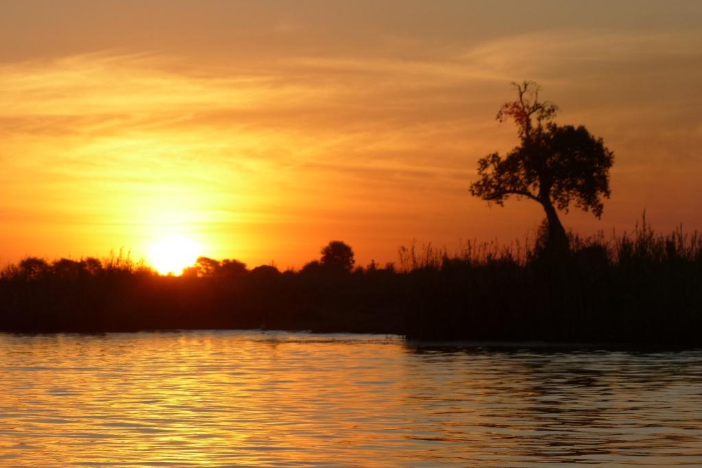 sunset rio chobe crucero kasane